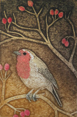 Robin, collagraph print, edition number 50, 7.5 x 11.5 cm, £45