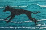 Sea Dog