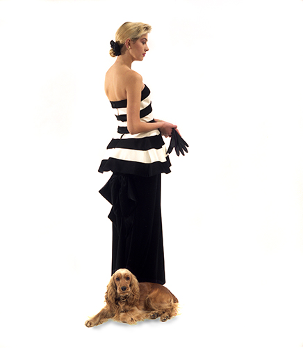 Model with Spaniel