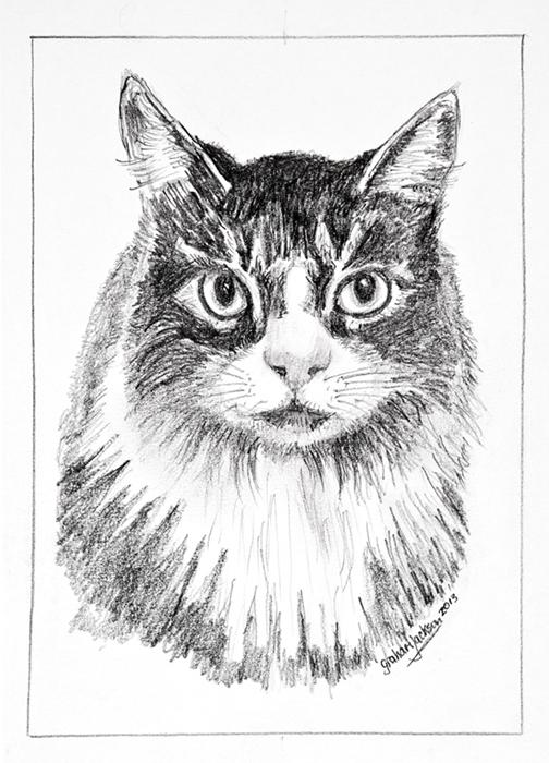 'Willow', a pencil portrait.