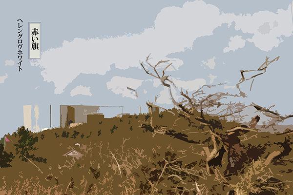 36 views of Wylfa