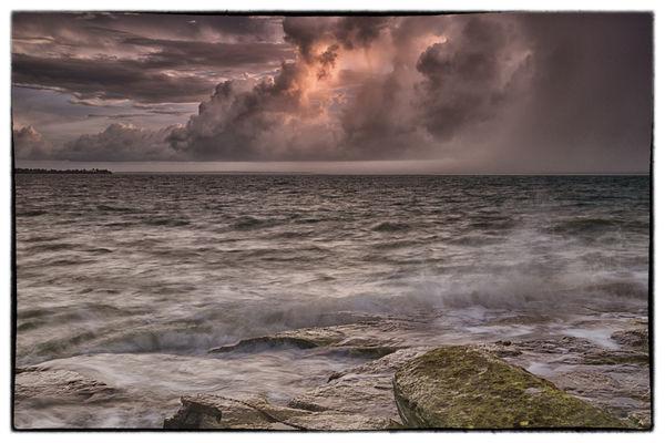 Darwin Storm