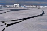MH0012 Sea Ice Jigsaw