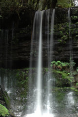 MH0150 Russell Falls RS