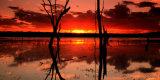 MH0511 Warruma Sunset RS