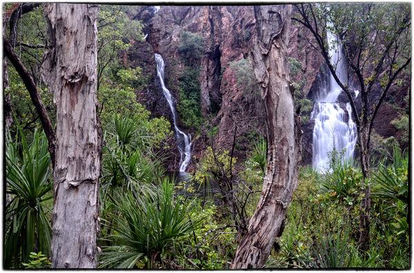 Wangi Falls 2