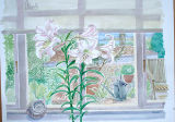 Lilies-and-Ammonite-waterco