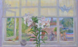 lilies,-Morning-oil-