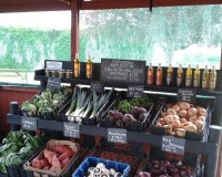 Fresh vegetables from the farm shop