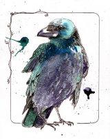Raven03tiffweb