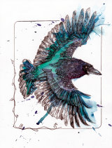 Raven04tiffweb