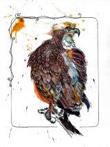 osprey01tiffweb