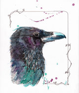 Raven 04
