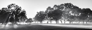 Brisk Landscape Photography Print