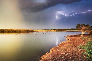 Herdsman Lake Lightning Storm Landscape Photography Print