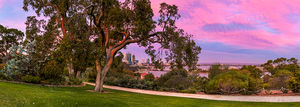 Kings Park Sunset Landscape Photography Print