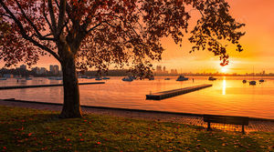 Matilda Bay at Sunrise Landscape Photography Print