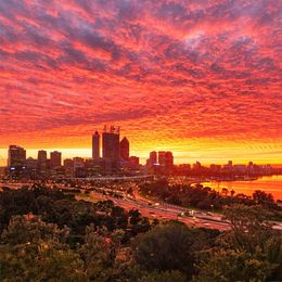Perth City Sunrise From Kings Park