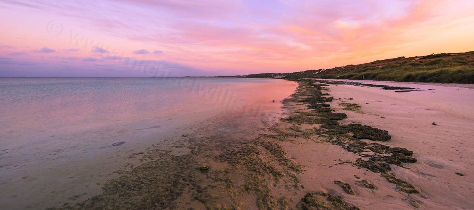 Stingrays at Sunrise, Coral Bay Landscape Photography Print
