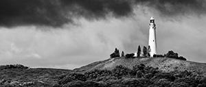 Wadjemup Landscape Photography Print