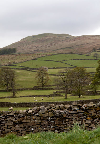 Hills by Hawes Yorkshire