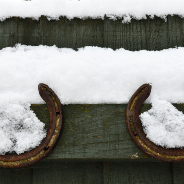 Horseshoes in the Snow