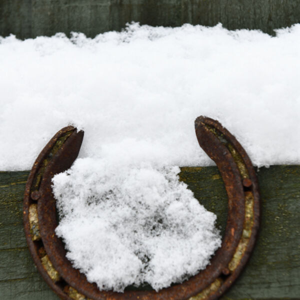 Horseshoe in the Snow