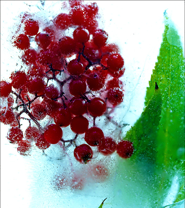 Ice Berries