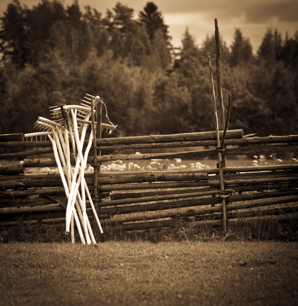 wooden rakes