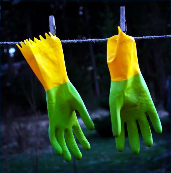 Rubber cloves