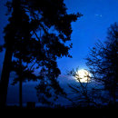 Moonlight at cemetery