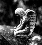 Cemetery angel #1