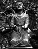 Cemetery angel #3