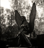 Cemetery angel #4
