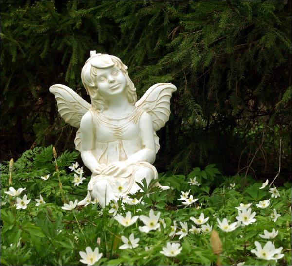 Gardenfairy