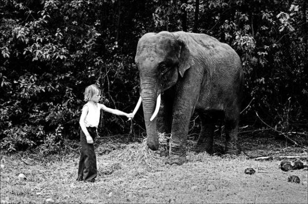 Boy with circus elephant