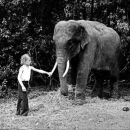 Boy with circus elephant