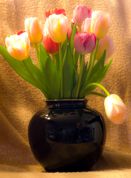 Tulips in black vase