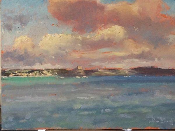 'Gannets, Mounts Bay' oil on Board