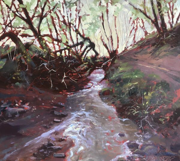 'Exmoor Waters'