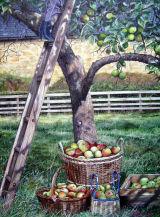 Harvest Helper. Normandy Life