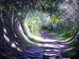 Sunny Chemin. Normandy Landscapes Collection