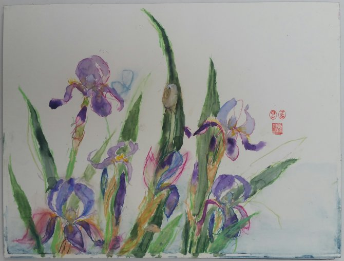 Snail and irises