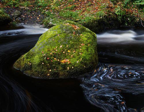 Babling Brook