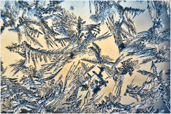 1st#PennyHopkins#Frosty Patterns