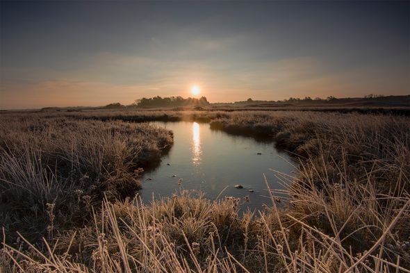 1st#PeteSorrell#Frosty morning over the marshes