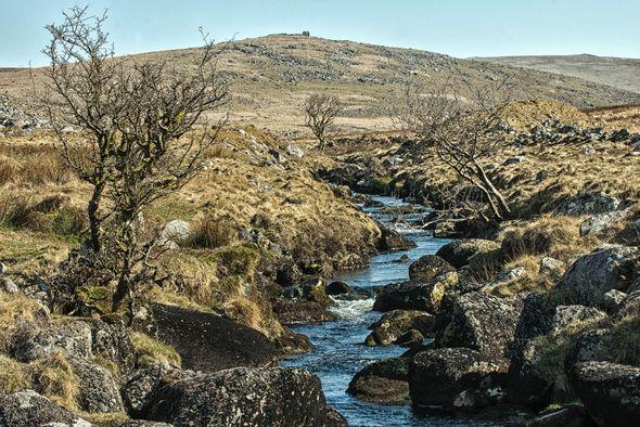 3rd#AndyLeeder#Dartmoor Early Spring