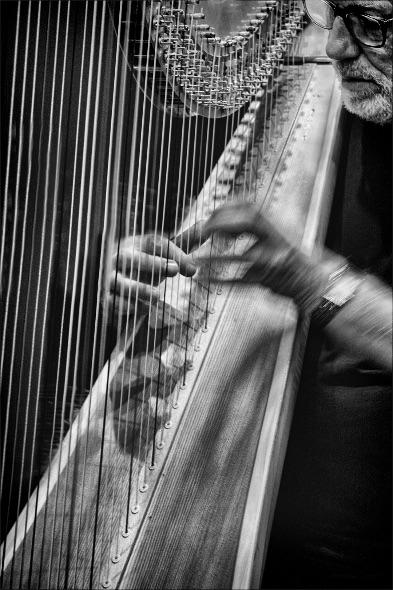 1st#Chris Holt#The Classical Harpist