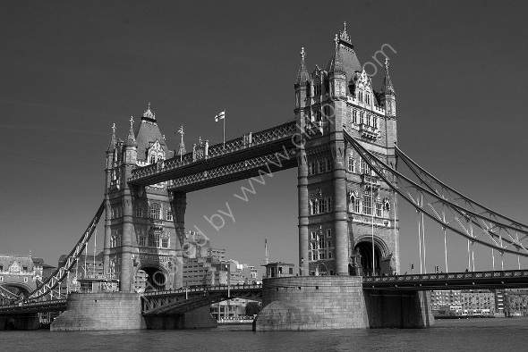2nd. Tower Bridge Andy Leeder