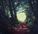 Forrest path above Dolgellau